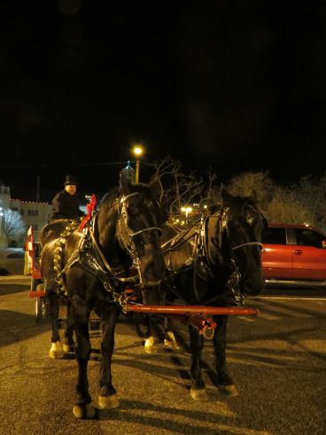 The tour concludes with a trip in a horse-drawn carriage.