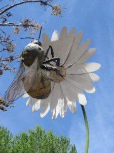 NMBKA Directory Beekeeping Images