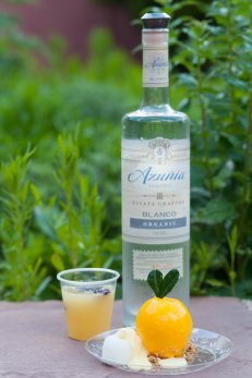 Coyote Cafe paired with Azunia tequila