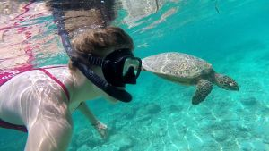 Girl snorkeling with a turtle in Bali