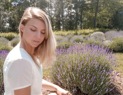 Lavender field instagram photo