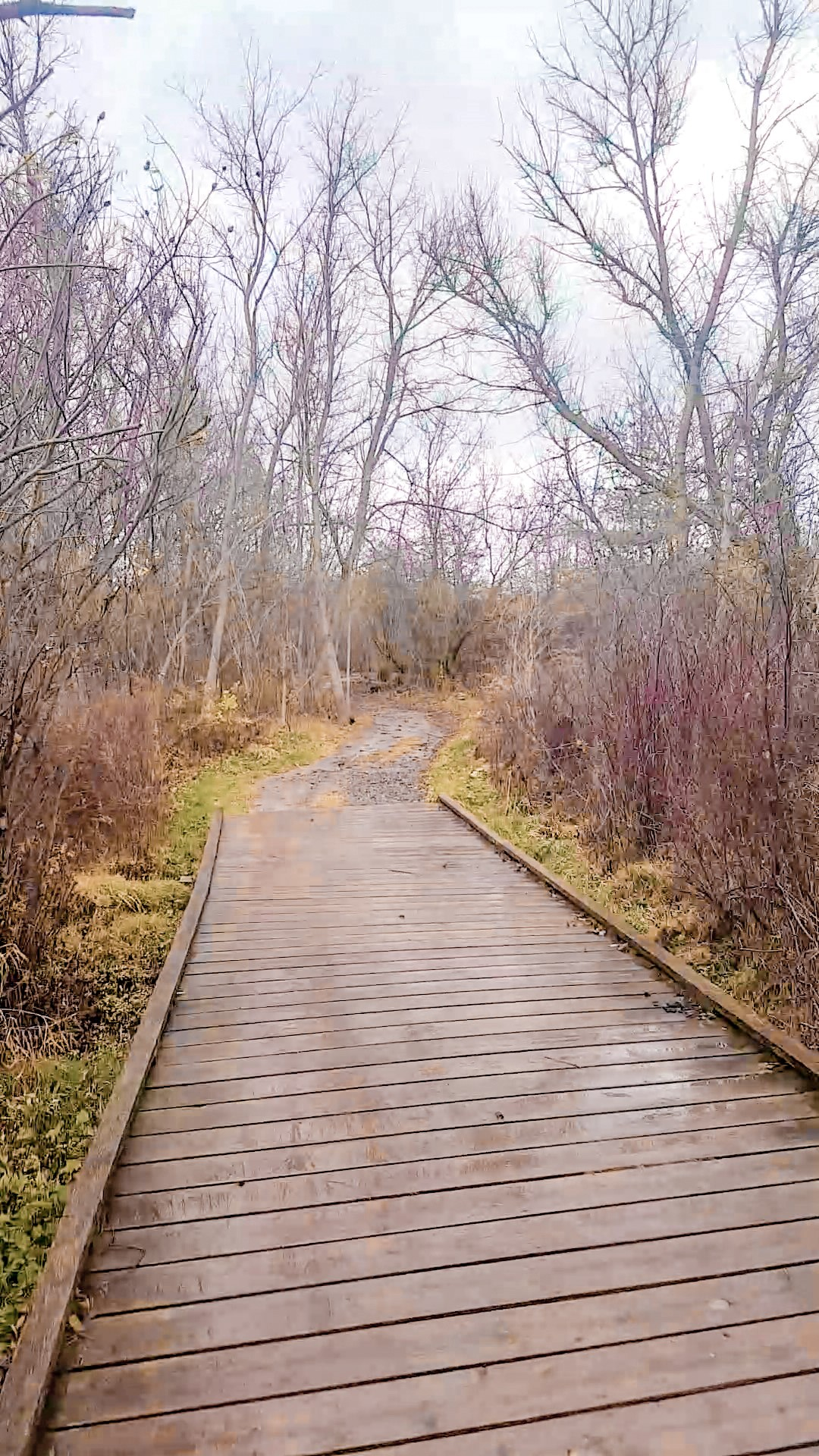 Hiking Harvest Trail