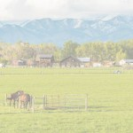 Rural Jobs Zone Legislation Introduced in House and Senate