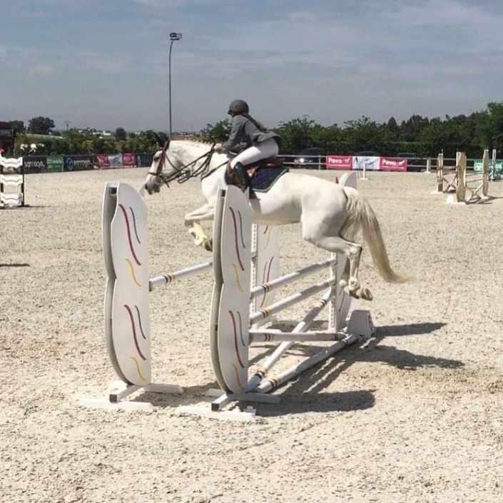 csn2-las-cadenas-nmv-horses