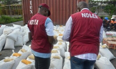 NDLEA detects Bags of Compressed cannabis sativa in Abuja Estate, Port Harcourt