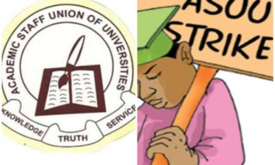 ASUU strike may resume if FG continue to flout agreements – ASUU UI Chair