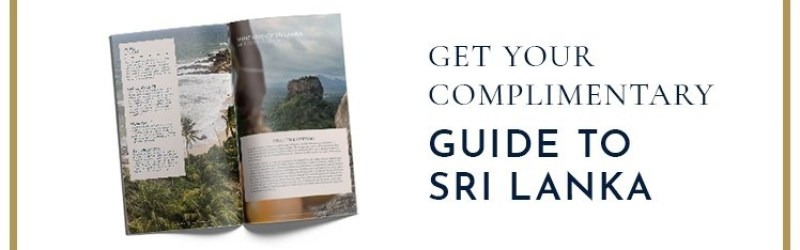 Read our complimentary guide to Sri Lanka »