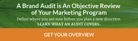 Download the brand audit overview
