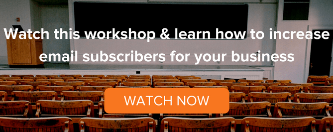 email-subscriber-live-workshop