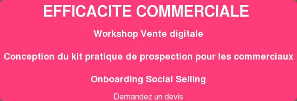 EFFICACITE COMMERCIALE Workshop Vente digitale Conception du kit pratique de prospection pour les commerciaux Onboarding Social Selling  Cliquez pour connaitre nos tarifs