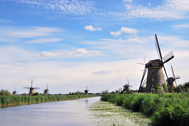 the-windmills-555944_640