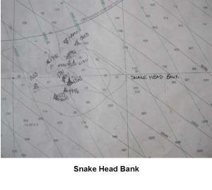 Snake Head Bank