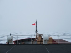 Here is what the Arctic looks like at 82º31.5'N 139º15'W from the bow of the Healy.
