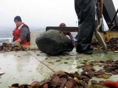 Look at the size of the rock the dredge brought up!