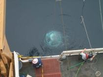"CTD submerged off the ""Hero Deck"""
