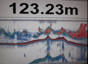 The sonar shows the sea floor, the band of blue, yellow and red. The schools of fish are the pink groupings.   The water depth is 123.23m.