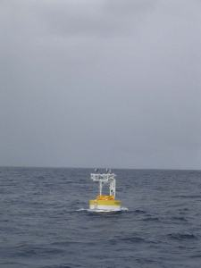 The Stratus 7 Buoy on station in the South Pacific Ocean just after being deployed from the ship