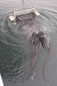 The cod ends of each of the three nets have been tied with white rope and are visible in the right-hand photo graph.