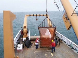 Crew of the ALBATROSS prepare the dredge.