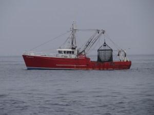 Commercial Scalloping Ship Atlantic