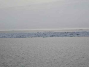 Waves and an ice floe on the Bering Sea.