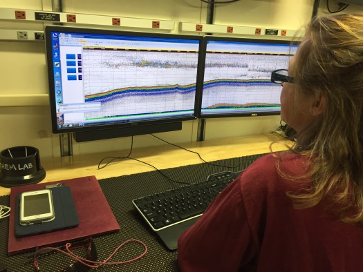 NOAA Chief Scientist Taina Honkalehto analyzing echogram.