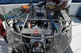 Video camera array used in reef fish surveys that forms a single 360 degree view