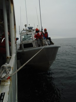 Davit lowering a launch boat