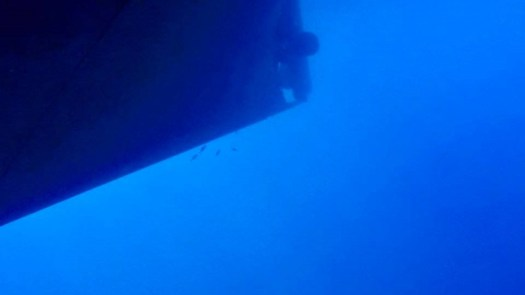 Divers inspect the hull of the ship.
