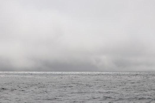 fog bank on the horizon