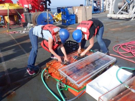 plankton nursery assembly
