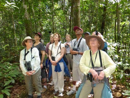 birding in Trinidad