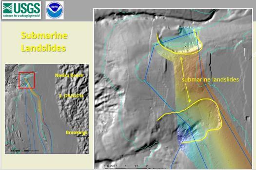 Submarine Landslides