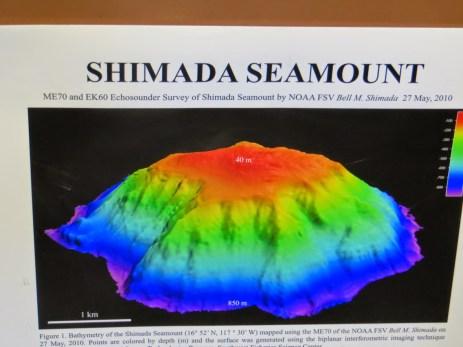 Shimada seamount