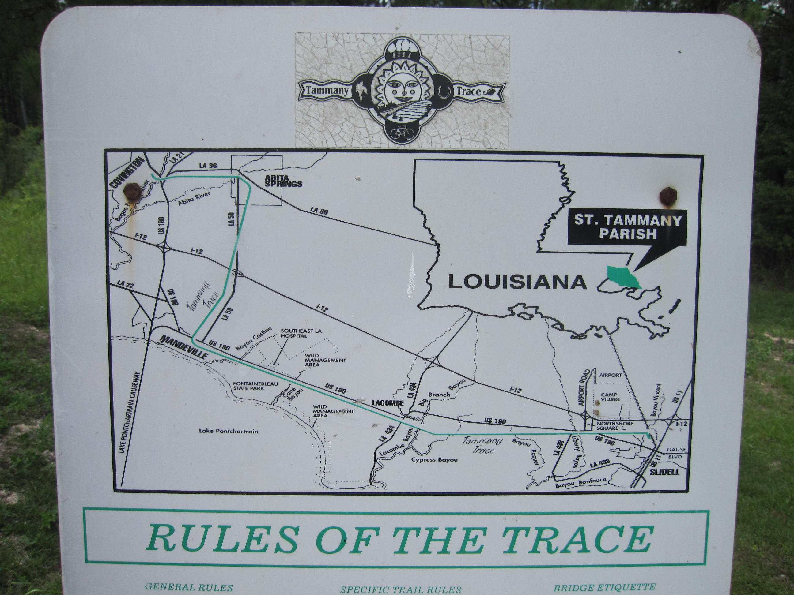 tammanytracemap