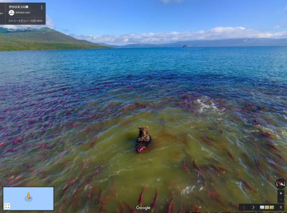 クリリスコエ湖のストリートビューのスクリーンショット。大量の鮭と、鮭を食べている熊