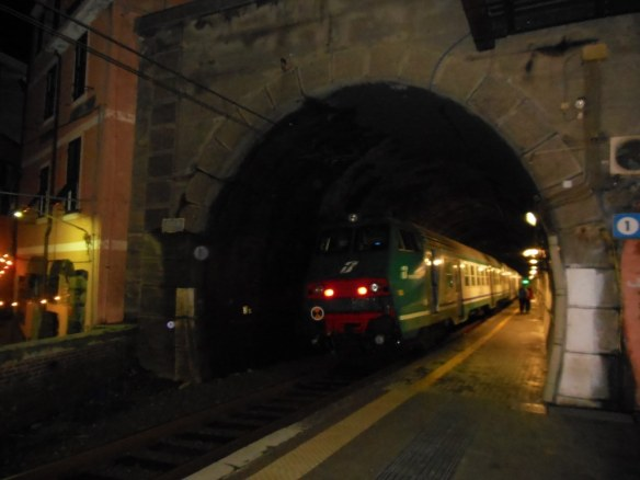 Train Pulling into Tunnel in Italy