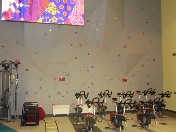 Climbing Wall in Olympic Strength Room