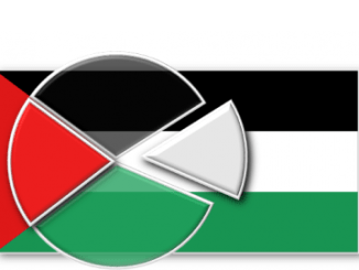 Palestinian Opinion Survey Flag