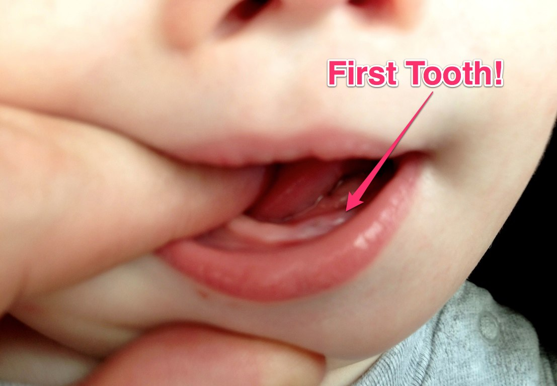 When Do Start Laugh Infants