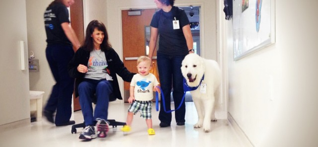 kid with down syndrome using therapy dog