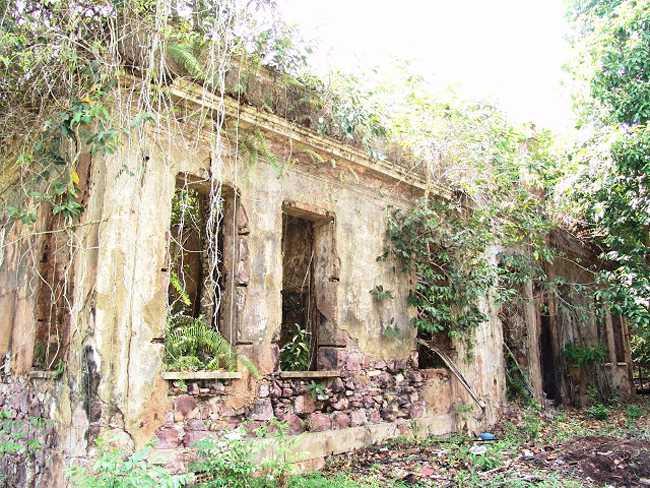 Ruinas de Paricatuba