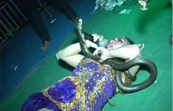 Cantora é atacada por cobra durante show e sofre colapso