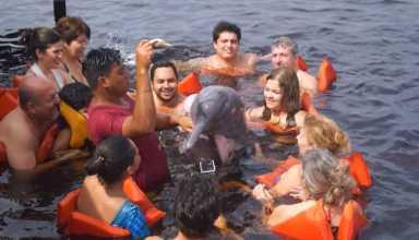 Nadar com os botos da Amazônia / Foto : No Amazonas é Assim