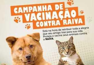Dia Mundial contra a Raiva / Divulgação