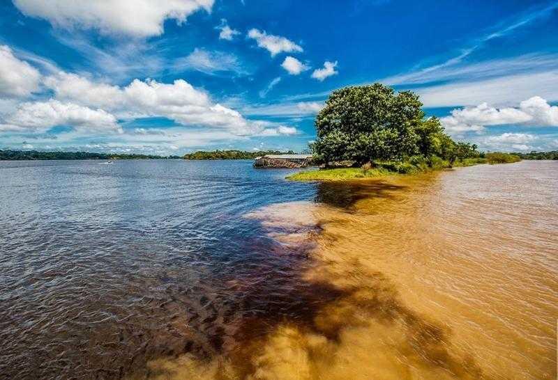 Encontro das Águas do lago de Tefé e do Rio Solimões / Divulgação