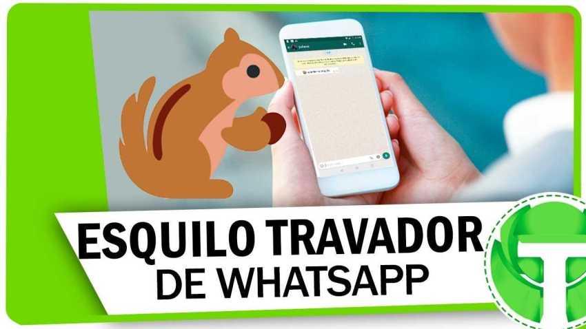 ATENÇÃO : Saiba porque o maldito esquilo trava seu Whatsapp no Android