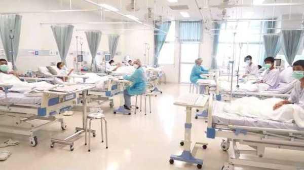 """Veja primeiras fotos dos """"13 Javalis tailandeses"""" se recuperando no hospital / Foto : Divulgação"""