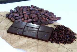 Barra de chocolate é produzida com cacau da floresta amazônica com a adição de algumas frutas regionais. / Foto: Barbara Brito/Fapeam