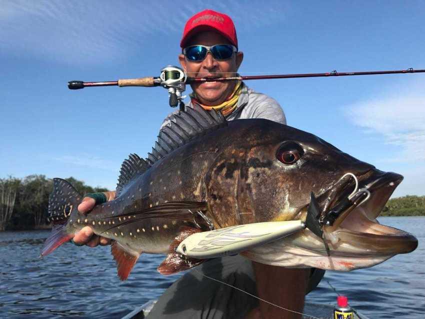 Belíssimo Tucunaré Paca capturado com a carretilha Chroma by Johnny Hoffmann, vara Venator SE e isca TNT 110mm, pelo pescador profissional Johnny Hoffmann.